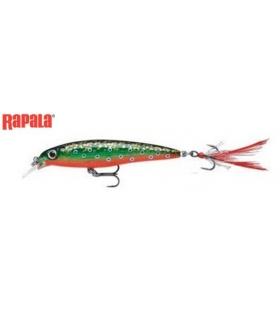 RAPALA X-RAP SUSPENDING 10CM BROOK TROUT