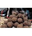 BOILIES TRYBION GLANIS ATTRACT 20 MM 800GR